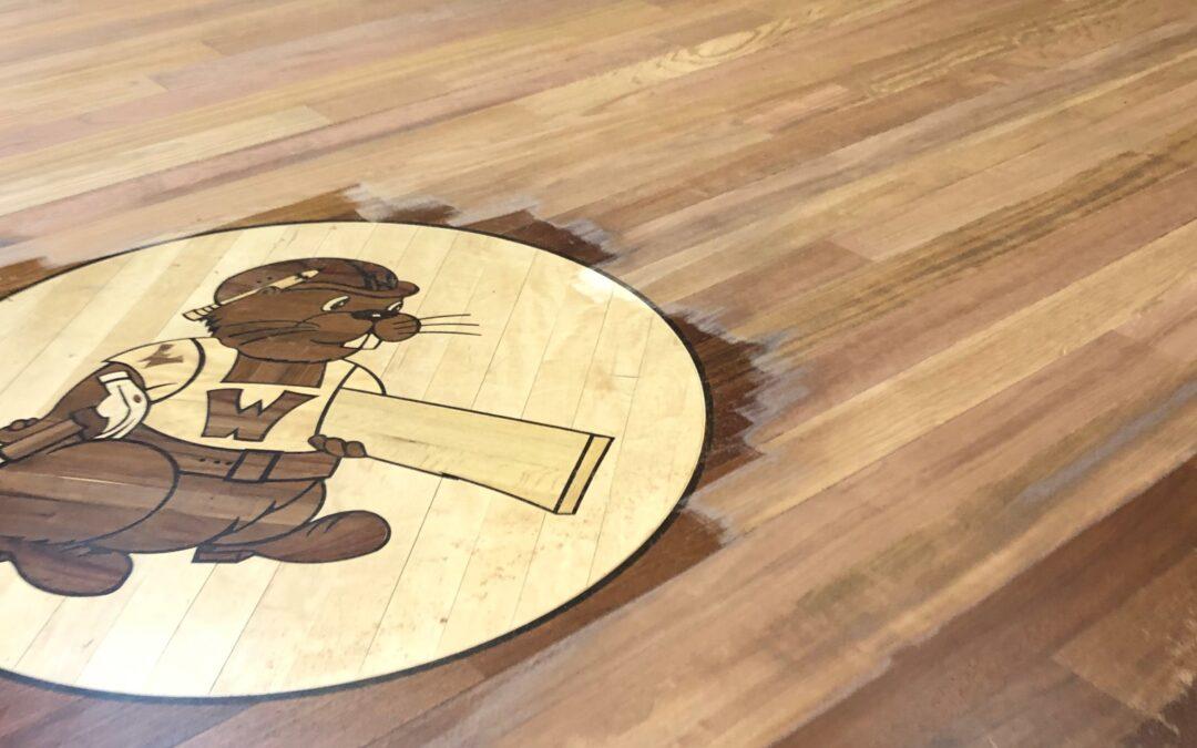 Refinishing The Woodchuck Flooring Showroom Hardwood Floors